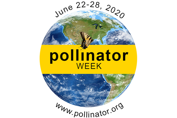 National Pollinator Week June 22-28, 2020