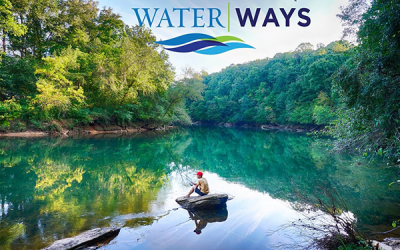 Kids Books on Caring for Your Waterways